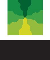 green-ivy-schools-logo-209w